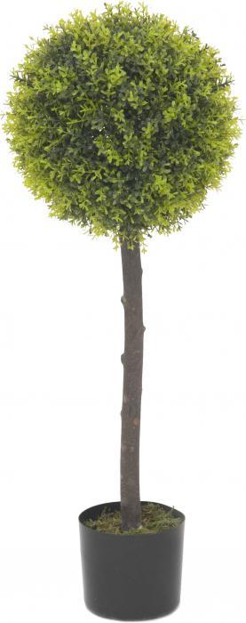 Lorbeerkugelbaum 180 cm