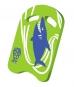 Kick- Board Shark Sealife -VPE 10 Stück